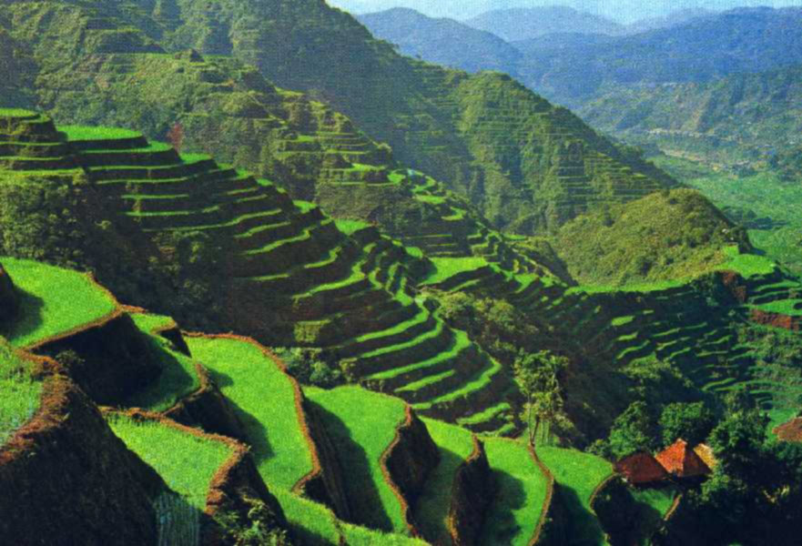 Banaue 2 modifie - Beautiful Places In The World